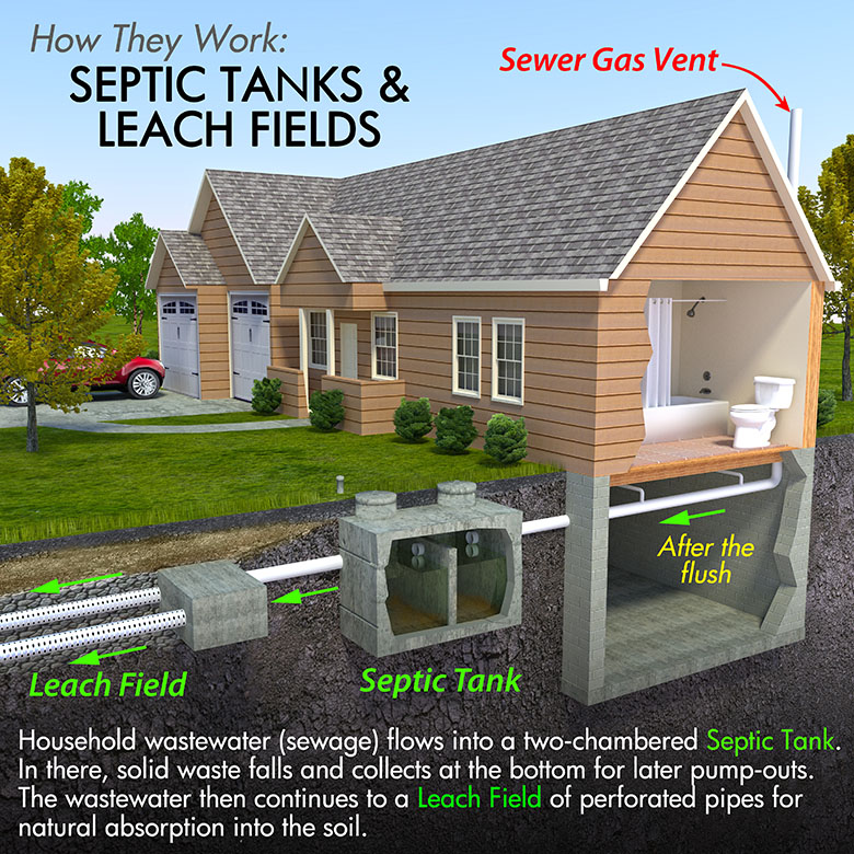 how septic works